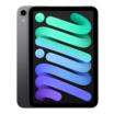 """Apple iPad mini (2021) 8,3"""" 256GB WiFi space grau"""