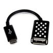 Belkin Adapter Micro-USB male auf USB A female Schwarz 0,12 m