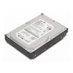 HD 500GB Lenovo SATA-300 intern 8,9 cm (3.5'') 7200rpm 8MB Cache 8,5ms für ThinkCentre