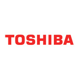 Toshiba dynaEdge Swap Next Business Day 3 Jahre EMEA Garantie