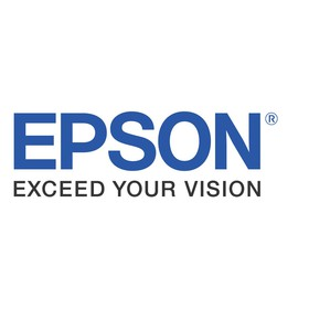Epson 256 MB RAM für C9100/C3800-Serie